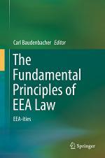 The Fundamental Principles of EEA Law