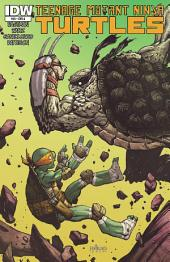 Teenage Mutant Ninja Turtles #34