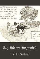 Boy life on the prairie
