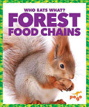 Forest Food Chains PDF