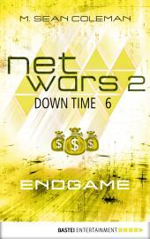 netwars 2 - Down Time 6: Endgame: Thriller