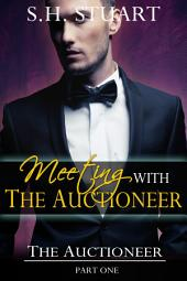 Meeting with The Auctioneer: The Auctioneer Part I: (New Adult BDSM Erotic Romance)
