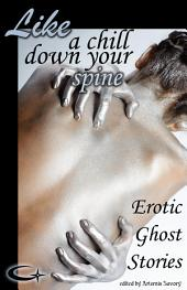 Like a Chill Down Your Spine: Erotic Ghost Stories