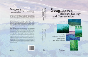 Seagrasses  Biology  Ecology and Conservation PDF