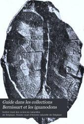 Guide dans les collections Bernissart et les iguanodons