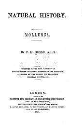 Natural History, Mollusca