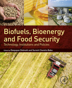Biofuels, Bioenergy and Food Security
