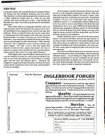 Bird World PDF