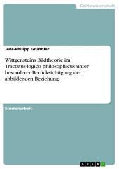 Wittgensteins Bildtheorie im Tractatus-logico philosophicus unter besonderer Berücksichtigung der abbildenden Beziehung