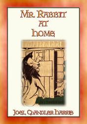 Mr RABBIT AT HOME   24 Illustrated Children s Stories about Mr Rabbit PDF