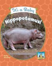 It's a Baby Hippopotamus!
