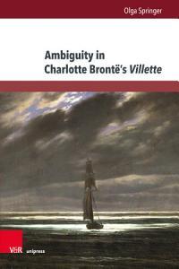 Ambiguity in Charlotte Bront     s Villette PDF