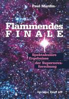 Flammendes Finale PDF