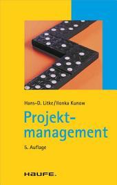 Projektmanagement: TaschenGuide