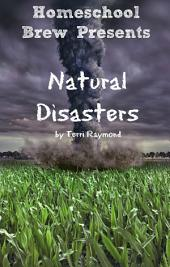 Natural Disasters: (Fourth Grade Social Science Lesson, Activities, Discussion Questions and Quizzes)