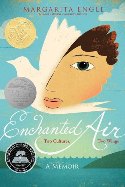Download Enchanted Air Book