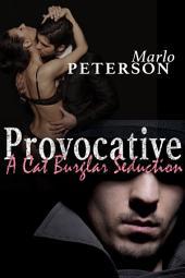 Provocative: A Cat Burglar's Seduction