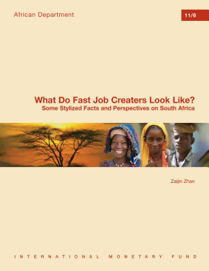 What Do Fast Job Creators Look Like  Some Stylized Facts and Perspectives on South Africa