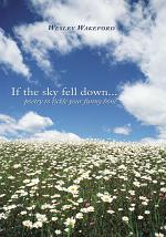 If the sky fell down...