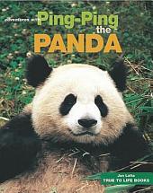 Ping Ping the Panda