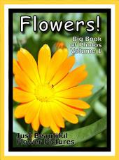 Just Flowers! vol. 1: Big Book of Flower Plants Photographs & Pictures