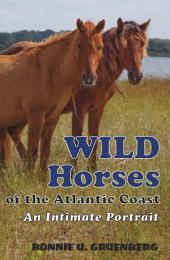 Wild Horses of the Atlantic Coast:: An Intimate Portrait