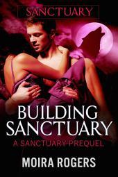 Building Sanctuary: Red Rock Pass #5