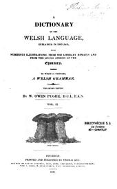 Dictionary of the Welsh Language: Explained in English