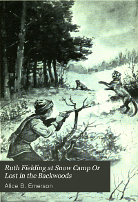 Ruth Fielding at Snow Camp  Or  Lost in the Backwoods PDF