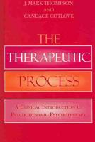 The Therapeutic Process PDF
