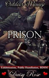 "Prison: Book 2 of ""Outdoor Menage"""