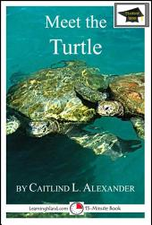 Meet the Turtle: Educational Version