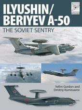Flight Craft 6: Ily'yushin/Beriyev A-50: The 'Soviet Sentry'