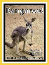 Just Kangaroos! vol. 1: Big Book of Kangaroo Photographs & Pictures