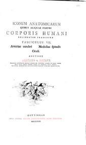 Iconum anatomicarum quibus aliquae partes Corporis Humani delineatae traduntur, Fasciculus VII, Arteriae cerebri medullae spinalis oculi