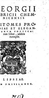 Epitomes prosodiae et elegantiarum poeticarum liber