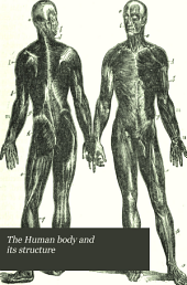 The Human Body and Its Structure: With Hints on Health, a Practical Treatise on the Design, Nature, and Functions of the Various Parts of the Human Frame