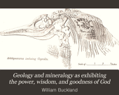 Geology and Mineralogy as Exhibiting the Power, Wisdom, and Goodness of God: Volume 2