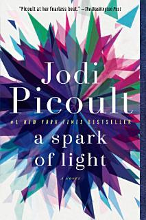 A Spark of Light Book