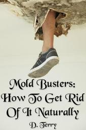 Mold Busters: How To Get Rid Of It Naturally