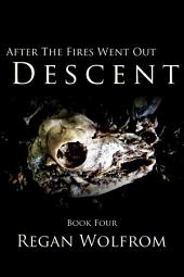 After The Fires Went Out: Descent: Book Four of the Unconventional Post-Apocalyptic Series