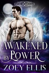 Awakened By Power (Book 3): A Paranormal Angel Romance