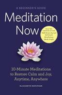 Meditation Now  A Beginner s Guide PDF