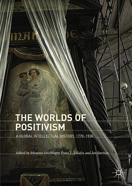 Download The Worlds of Positivism Book