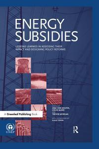 Energy Subsidies PDF