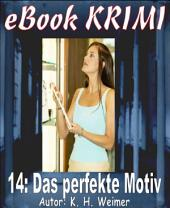 Krimi 014: Das perfekte Motiv