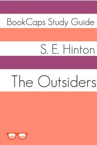 The Outsiders  Study Guide  Book