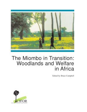 The Miombo in Transition PDF