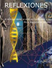 El ADN del alma, el ADN no codificante y los Micro Agujeros de Gusano