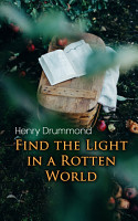 Find the Light in a Rotten World PDF